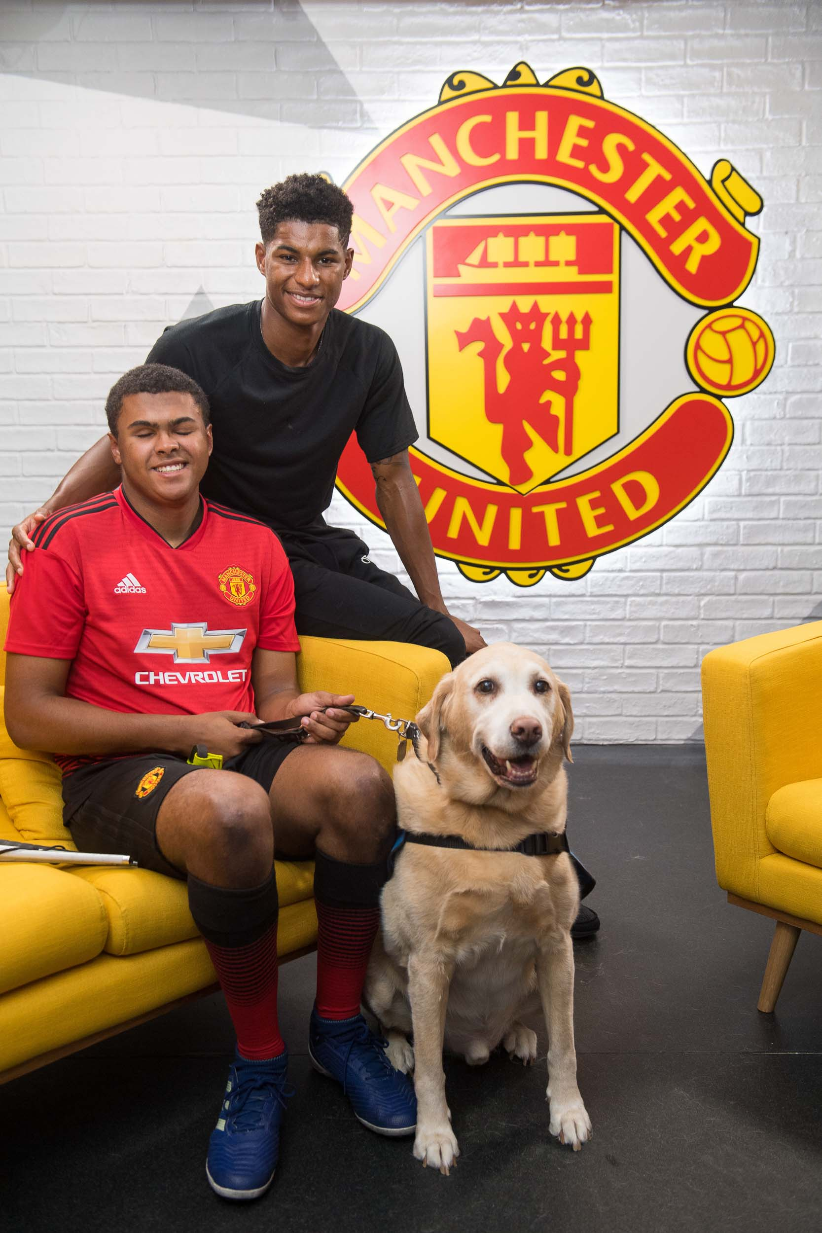 Manchester United Football Guide Dogs